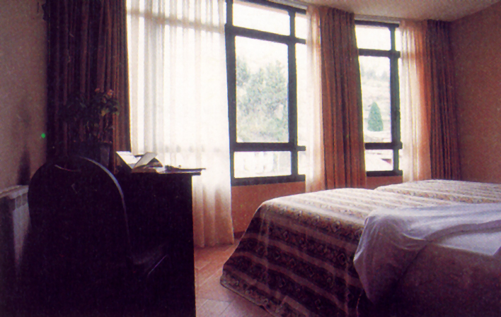 Hotel 236