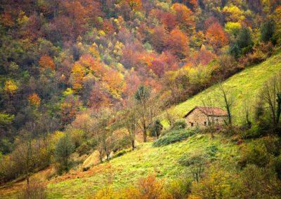 Casa rural de alquiler por habitaciones  73